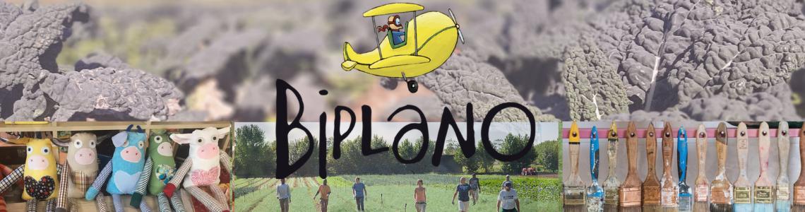 Cooperativa Biplano