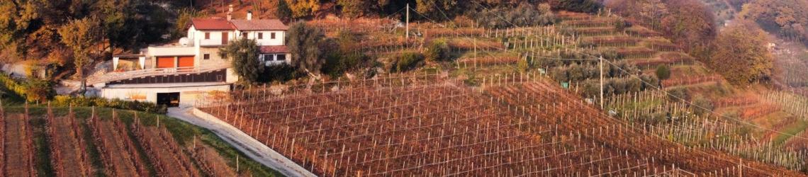Azienda Agricola De Toma