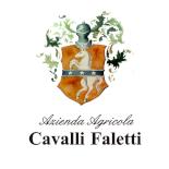 928Azienda Agricola Cavalli Faletti