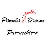 3174Pamela's Dream